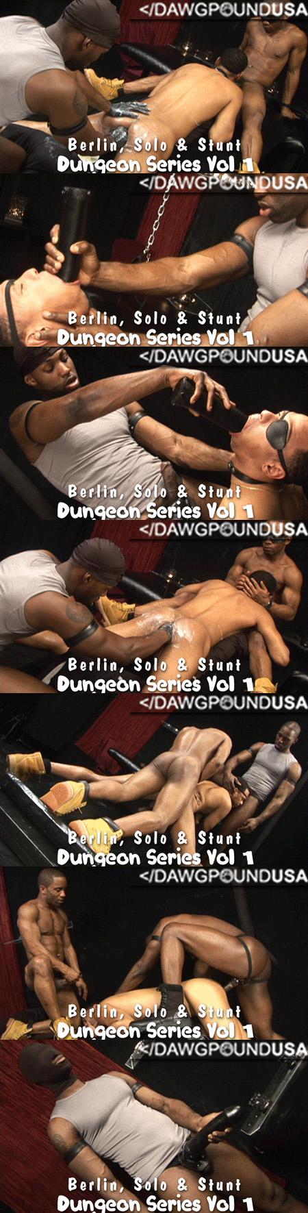 Dawgpoundusa.com - Dungeon