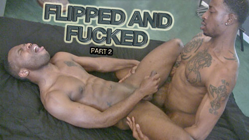 Flipped and Fucked